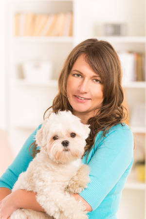 maltese dog: Beautiful woman holding little dog maltese at home Stock Photo