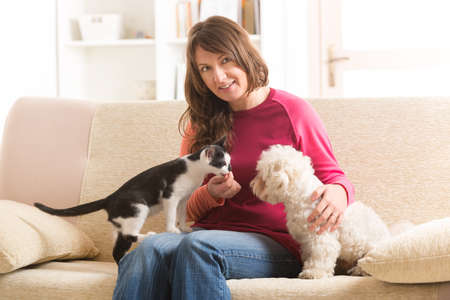 Little dog maltese and black and white cat sitting with owner on the sofa in home photo