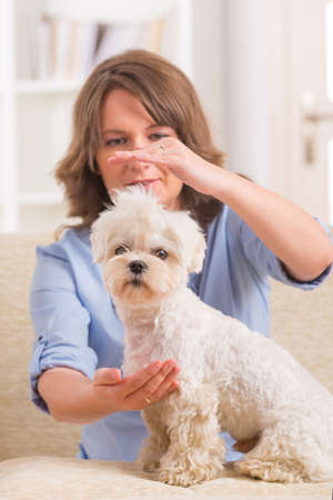 qigong: Woman doing Reiki therapy for a dog, a kind of energy medicine  Stock Photo