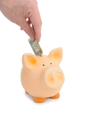 Piggybank savings with hand with one dollar inside photo