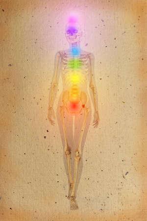 chakras: Chakras ilustran sobre el cuerpo humano con el esqueleto visible en el pergamino viejo