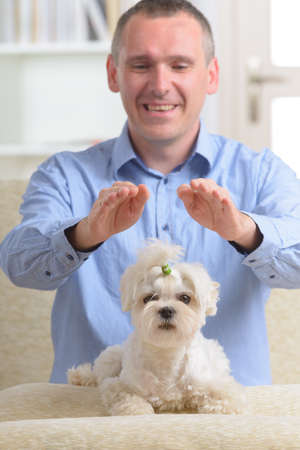 Man doing Reiki therapy for a dog, a kind of energy medicine  photo