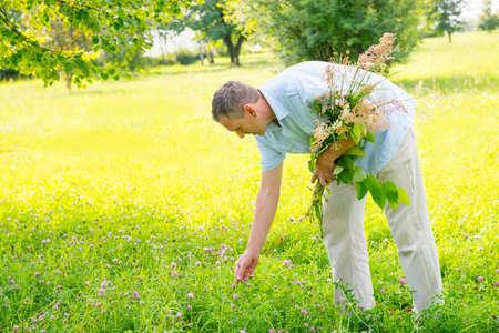 Man herbalist picking up wild herbs photo