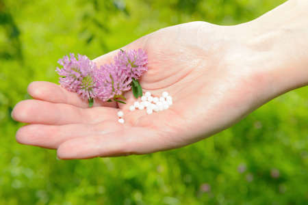 lactose: Homeopathic lactose sugar globules on hand with flowers, outdoors. Stock Photo