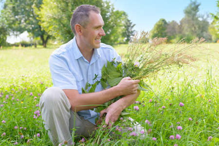 wild herbs: Man herbalist picking up wild herbs