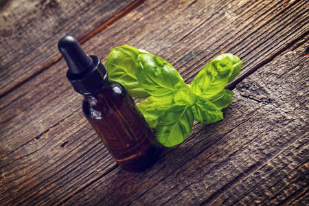 essentials: Basil organic essential oil use for food or aromatherapy