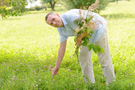 herboristeria: Hombre herbolario recogiendo hierbas silvestres Foto de archivo