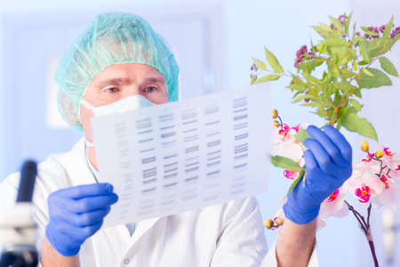 nucleic: Scientist analizing DNA sequence Stock Photo