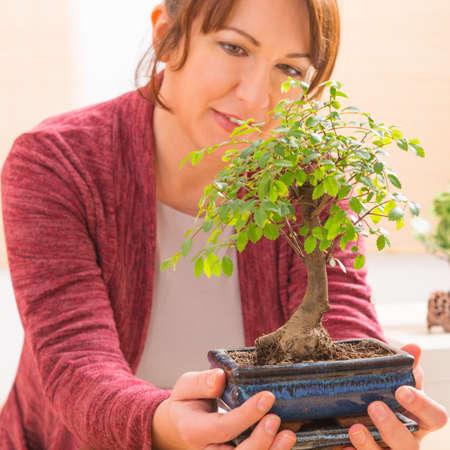 bonsai tree: Beautiful woman holding bonsai tree Stock Photo