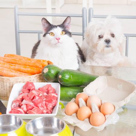 essen: Vorbereiten natürliche Natur, Bio-Lebensmittel für Haustiere zu Hause