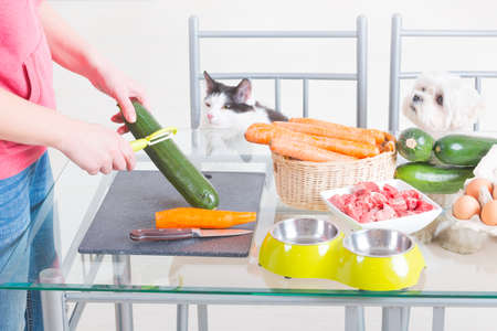 Preparing natural natural, organic food for pets at home