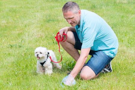 Propietario limpieza después del perro con bolsa de plástico