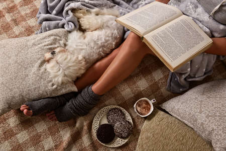 Woman with cute dog Maltese, sweet gingerbread cookies, book, hot drink  lying on bed in the cozy room 스톡 콘텐츠