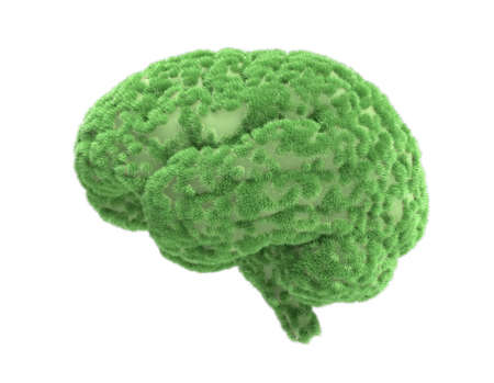 Concept of eco friendly, think green and other ecological ideas. Human brain with green grass growing on it. 3d illusstration.