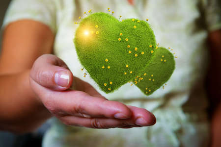 Woman's hands holding green hearts with yellow flowers, natural and ecological life style concept, gardening in pure, healthy environment