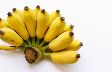 musa: banana, Musa ABB cv  Stock Photo