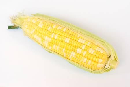 bicolor: corn, bicolor