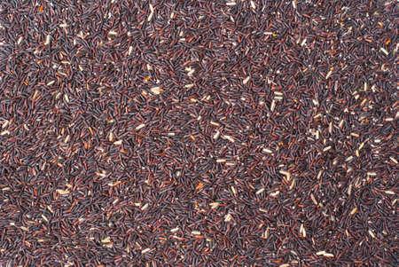 Background Grain brown rice. photo