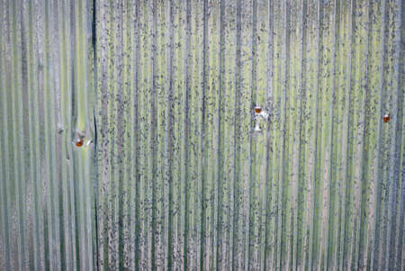 Galvanized corrugated iron photo