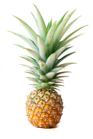 Fresh whole pineapple photo