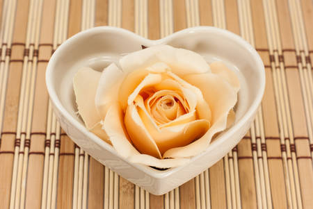 Rose Flowers Heart Over White. Valentine. Love photo