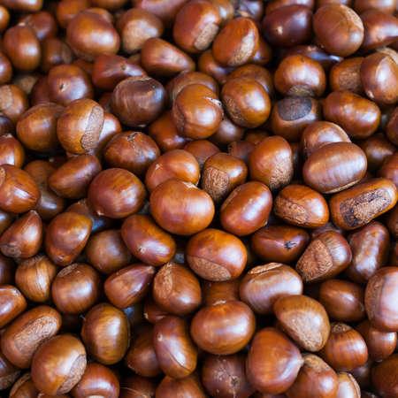 marron: Chestnut close up shoot,background