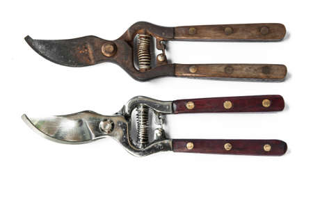 stainles steel: pruning shear Stock Photo