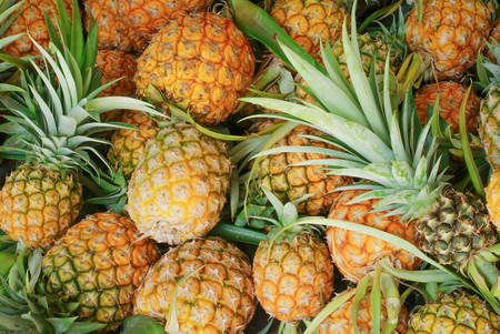 pineapple Stock Photo - 35265342