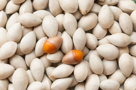 Ginkgo biloba seed in Thai food market, Ginkgo seeds background photo