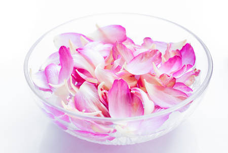 bowel: lotus petals in bowel of water for body treatment,spa concept