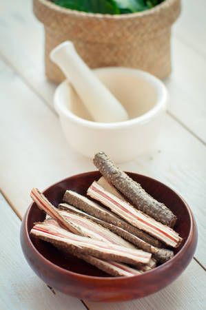 neem: Medicinal neem plant