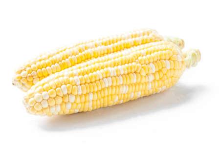 달콤한 옥수수, 2 색 스톡 콘텐츠