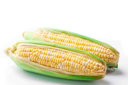 corn on the cob: sweet corn, bi-color