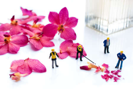 alquimia: alchemy and aromatherapy set with orchid flowers and miniature people Foto de archivo