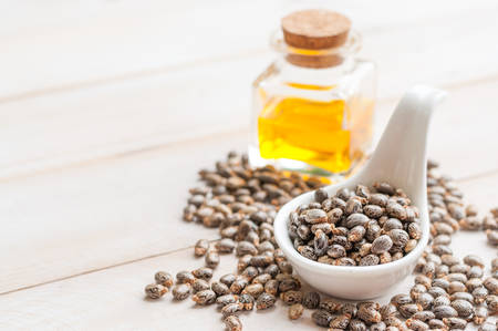 castor: Castor oil with beans on wooden surface Stock Photo