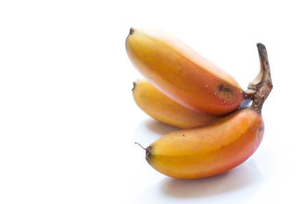 musa: Red banana, Musa Nak Musaceae