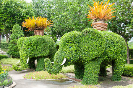 Green Garden And Trees In Elephant Shape Stock Photo, Picture And ...