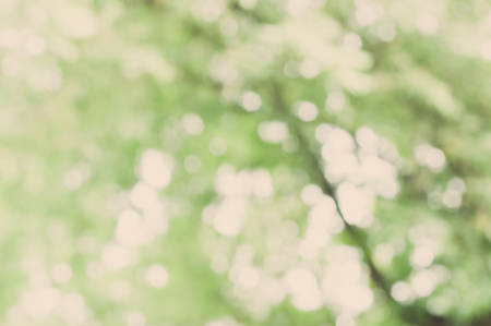 Bokeh of nature background