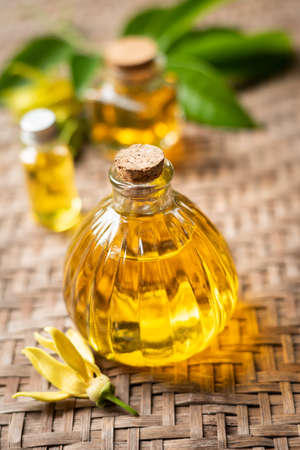 Ylang ylang oil in bottles on bamboo background