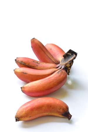 Red banana, Cavendish banana isolated on white background