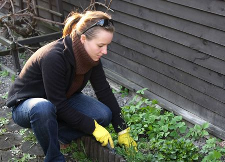 woman is doing spring cleaning in garden Stock Photo
