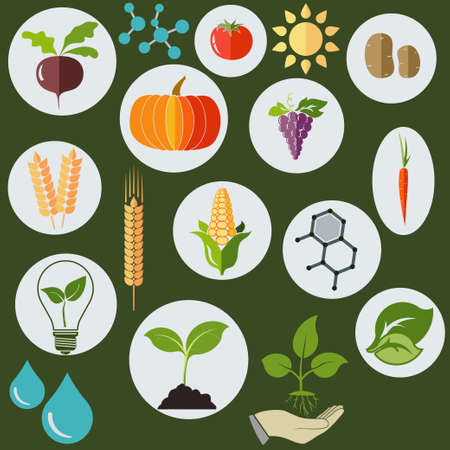 water on leaf: Agronomic Agricultural icons flat style, Science biology research chemical formulas, plants, sun and water drops - vectors