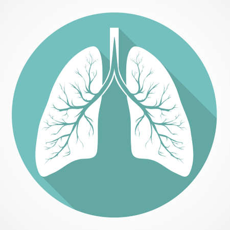 lung disease: Human Lung anatomy flat icon with long shadow. Vector