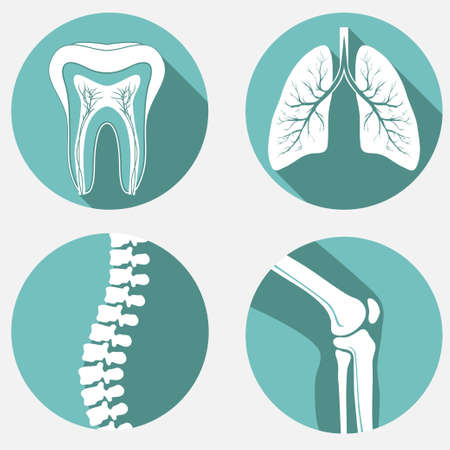oral surgery: Medical labels set, diagnostic clinic badges, healthcare design elements. Illustration
