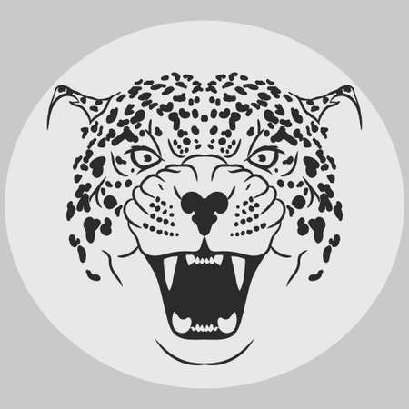 bared teeth: Leopard Portrait. Angry wild big cat head. Cute face of African Cat. Aggressive animal with bared teeth in cartoon style, cat tattoo, t-shirt print design