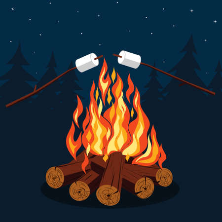 night: Bonfire with marshmallow - camping, burning woodpile in the night Stock Photo