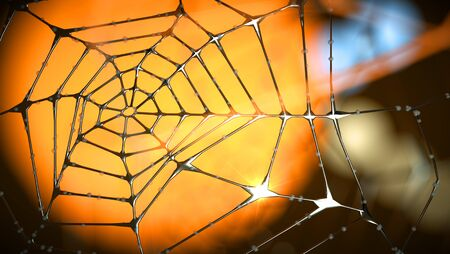 artistic end abstract spider web of metal