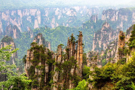 Quartzite sandstone pillars and peaks with green trees and mountains panorama, Zhangjiajie national forest park, Hunan province, China