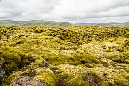 Icelandic fields of lava covered with moss panorama, South Iceland