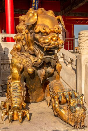 Golden chinese guardian lion or shishi statue from Ming dynasty era, at the entrance to the palace in the Forbidden City, Beijing, China